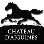 chateau-d-aiguines-gorges-du-verdon-lac-de-sainte-croix-logo